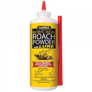 boric acid roach powder